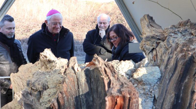 Il vescovo Tuzia visita il territorio di Avigliano: tappa alla Foresta Fossile